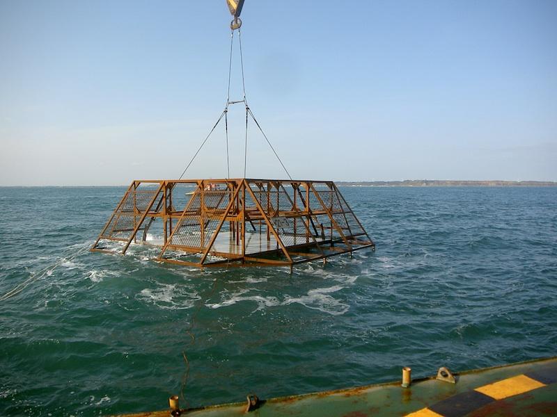 平成21年度千葉県水産基盤整備関係事業(地域水産物供給基盤整備事業)魚礁設置工事